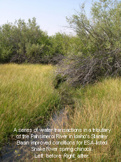 series of water transactions in a tributary, improved conditions. Before.