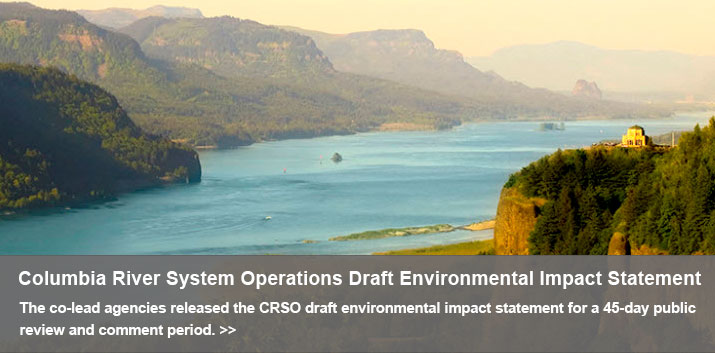 The co-lead agencies released the CRSO draft environmental impact statement for a 45-day public review and comment period.