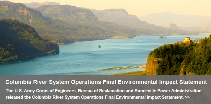 Columbia River System Operations Final Environmental Impact Statement