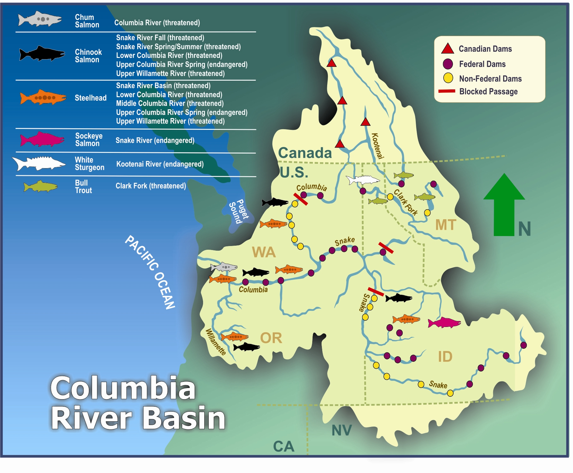 Columbia Basin ESA map on canadian columbia river dams map, wanapum dam columbia river on map, us dams and reservations map, snake river dams map, bonneville dam map,