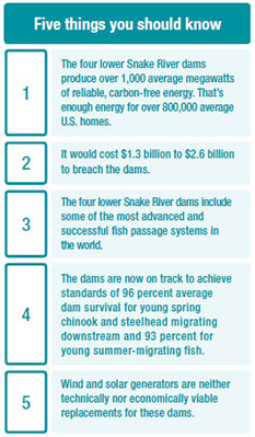Five things to know about breaching dams