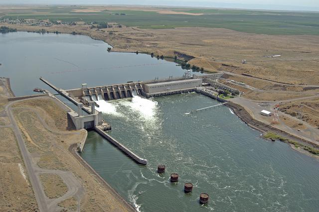 2014 progress report for Dam fish count