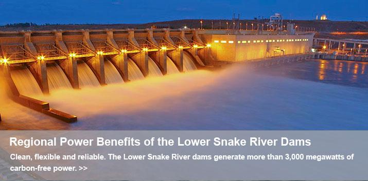 IceHarbor Dam