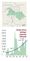 Snake River fall chinook abundance graph